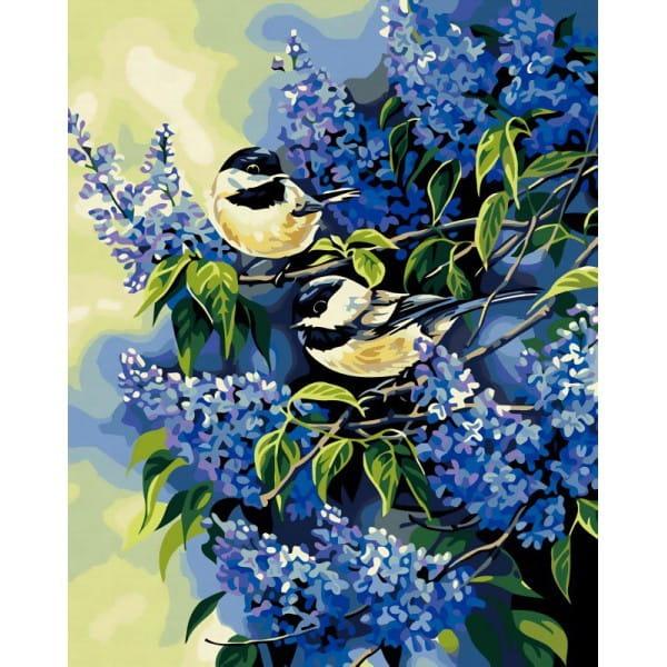 Раскраска по номерам Белоснежка Картина синицы