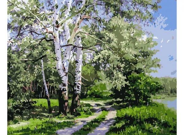 Раскраска по номерам Белоснежка Белая береза
