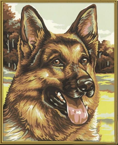 Раскраска по номерам Schipper 9240382 Овчарка