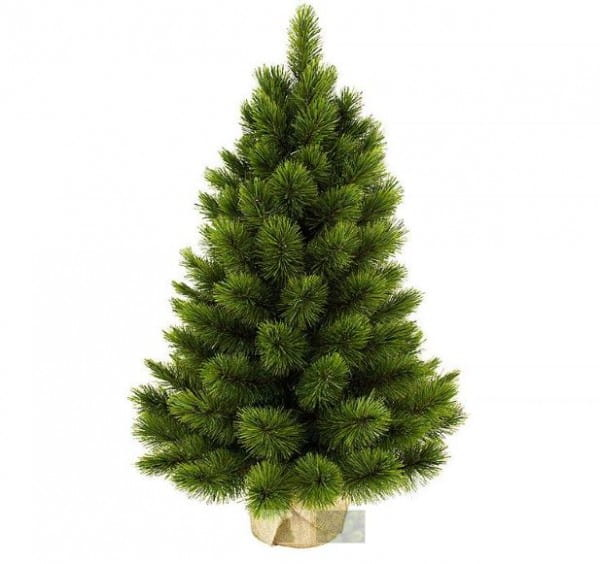 Купить Ель Triumph Tree Триумф Норд - 90 см (в мешочке) в интернет магазине игрушек и детских товаров