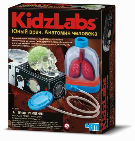 Игровый набор 4M Юный врач - Анатомия человека