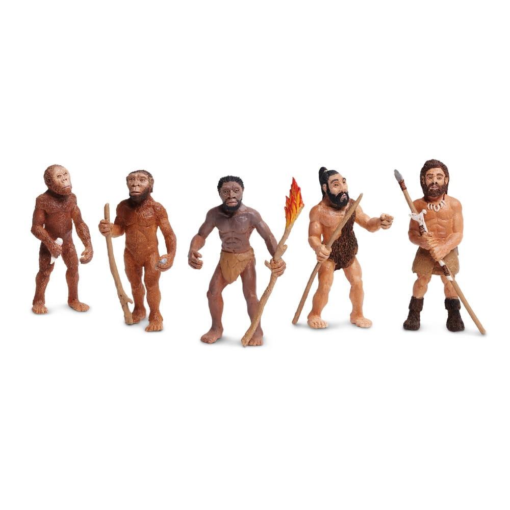 Обучающий набор SAFARI Эволюция человека