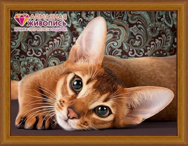 Мозаика Алмазная живопись Абиссинская кошка