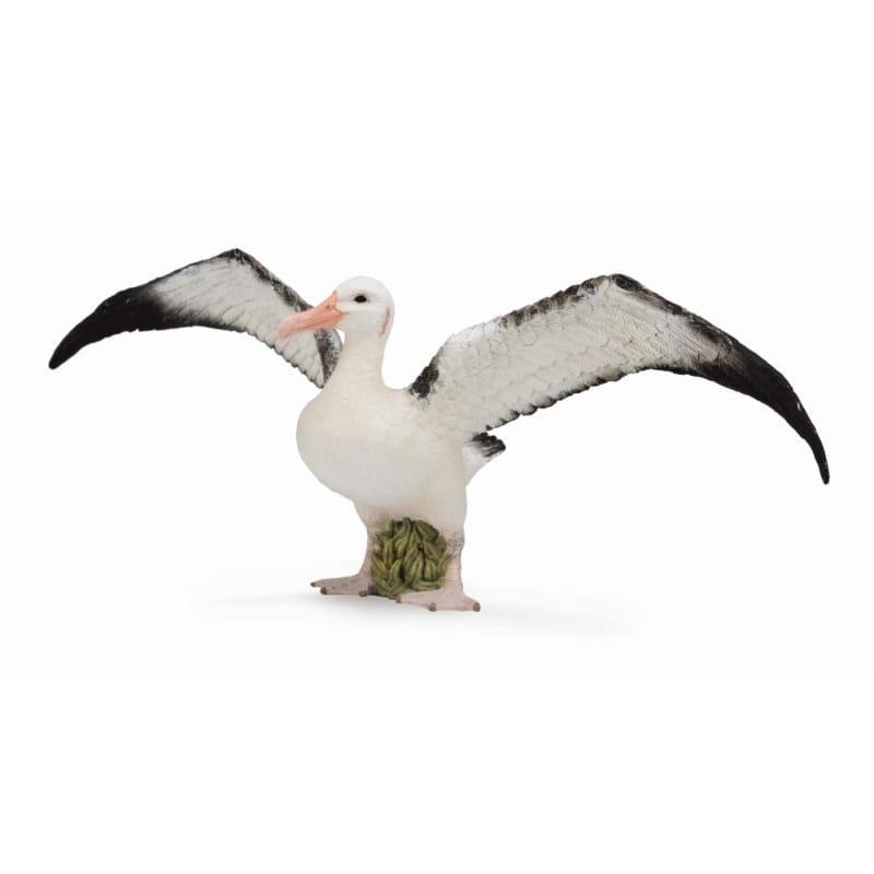 Фигурка Collecta 88765b Странствующий альбатрос - L