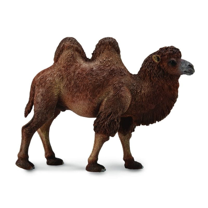 Фигурка Collecta 88807b Двугорбый верблюд - L