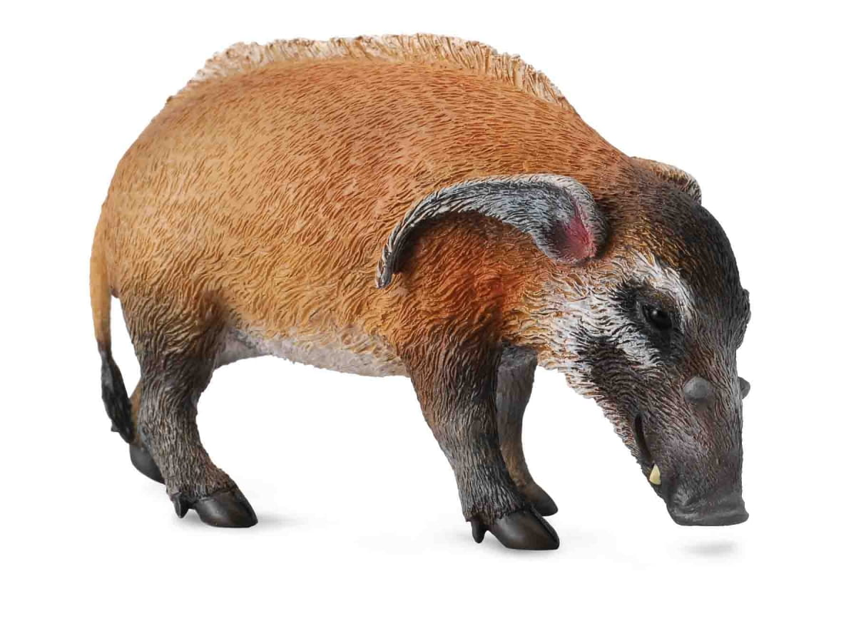 Фигурка Collecta Дикий кабан - Фигурки животных