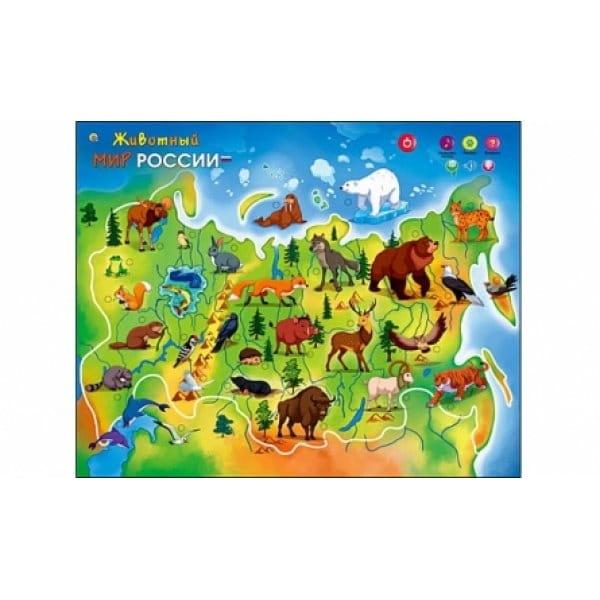 Электронный звуковой плакат Рыжий кот Животный мир России - Электронные плакаты и игры