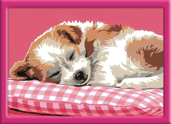 Раскраска по номерам Ravensburger 28245 Спящий щенок