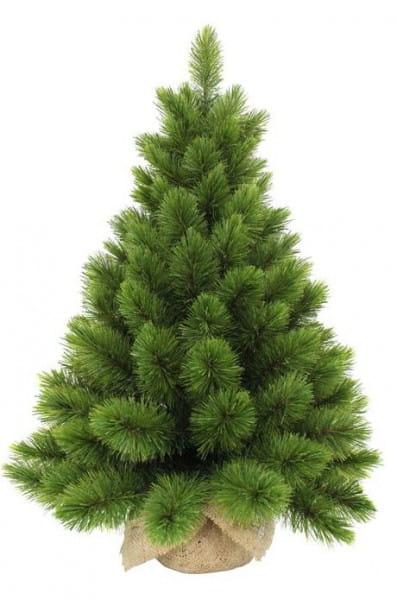 Купить Сосна в мешочке Triumph Tree Триумф Люкс - 90 см в интернет магазине игрушек и детских товаров