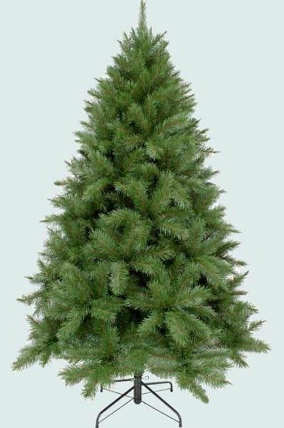 Ель Triumph Tree Букингемская - 230 см