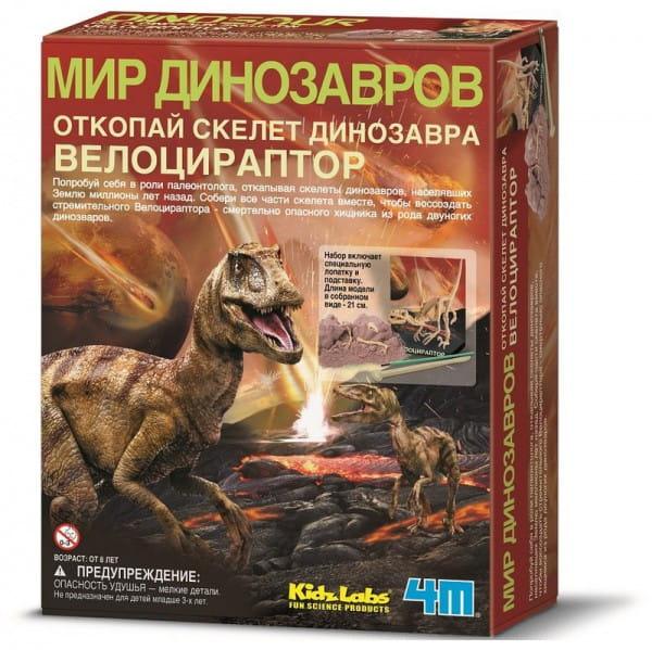 Археологический набор 4М Мир динозавров - Скелет велоцираптора