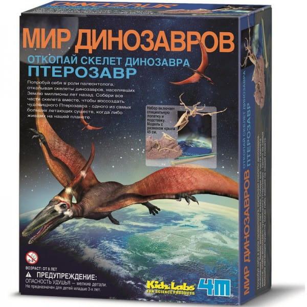 Купить Археологический набор 4М Мир динозавров - Скелет птерозавра в интернет магазине игрушек и детских товаров