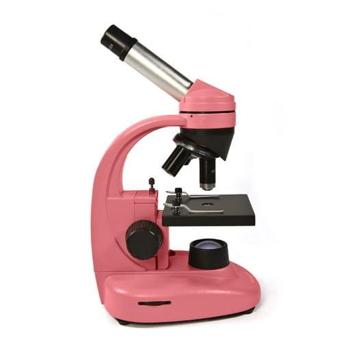 Купить Детский Микроскоп Levenhuk Rainbow 50L NG - Роза Rose в интернет магазине игрушек и детских товаров